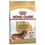 Royal Canin Hunde-Trockenfutter für ausgewachsene Dackel, 1,5 kg