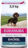 Eukanuba Breed Specific Dackel Trockenfutter - optimal auf die Rasse abgestimmtes Premium Hundefutter mit Huhn, 2,5 kg