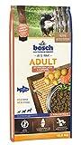 Unser Futtertestsieger: Bosch Adult Lachs und Kartoffel